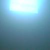 Whiteout/ Hvitblinda